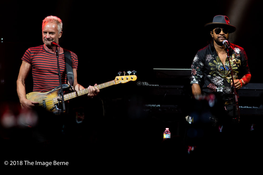 Sting, Shaggy-10.jpg