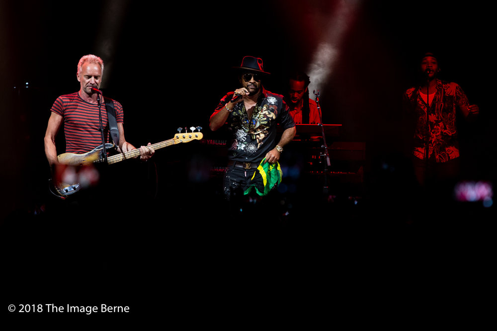 Sting, Shaggy-13.jpg