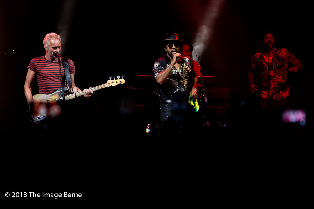Sting, Shaggy-14.jpg