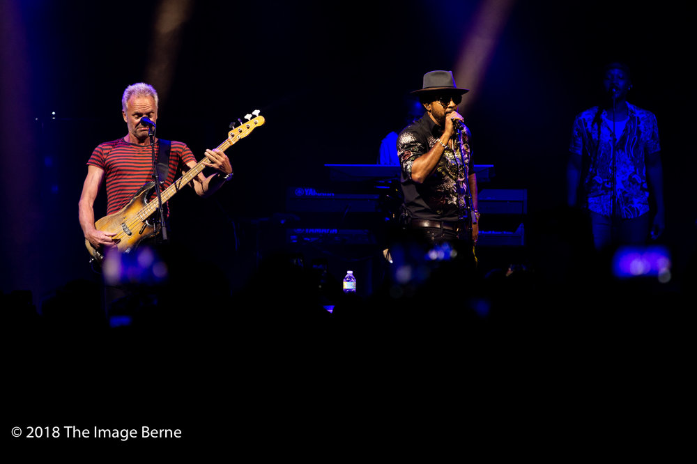 Sting, Shaggy-16.jpg