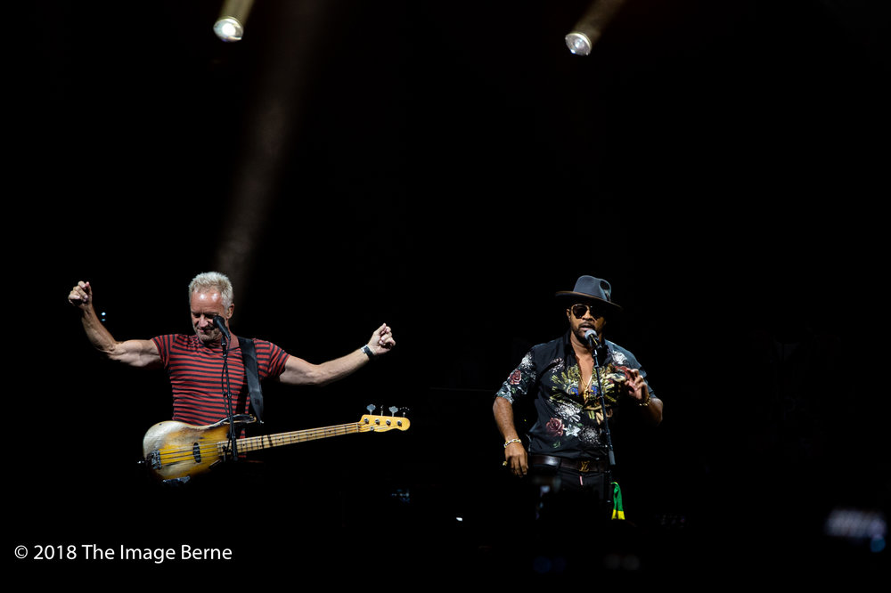 Sting, Shaggy-22.jpg