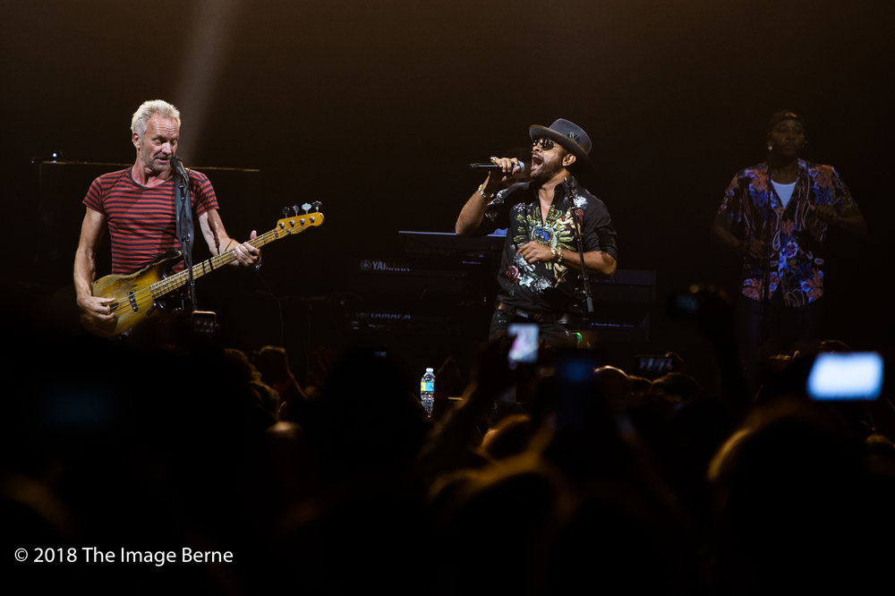 Sting, Shaggy-23.jpg