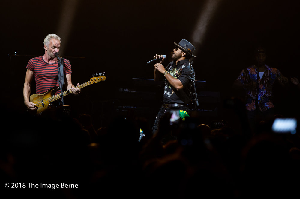 Sting, Shaggy-24.jpg