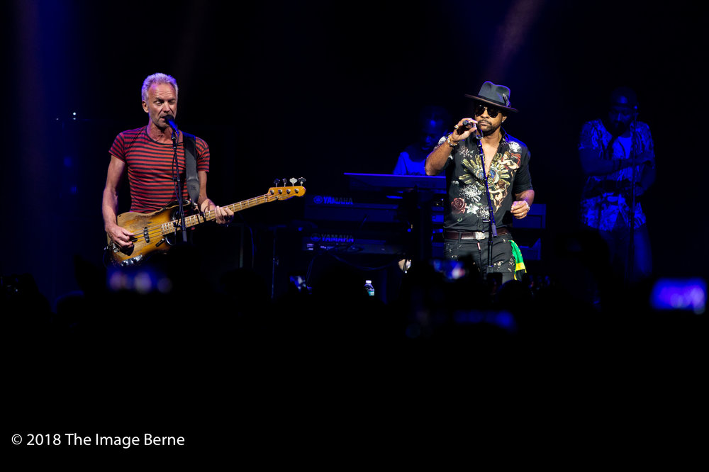 Sting, Shaggy-25.jpg