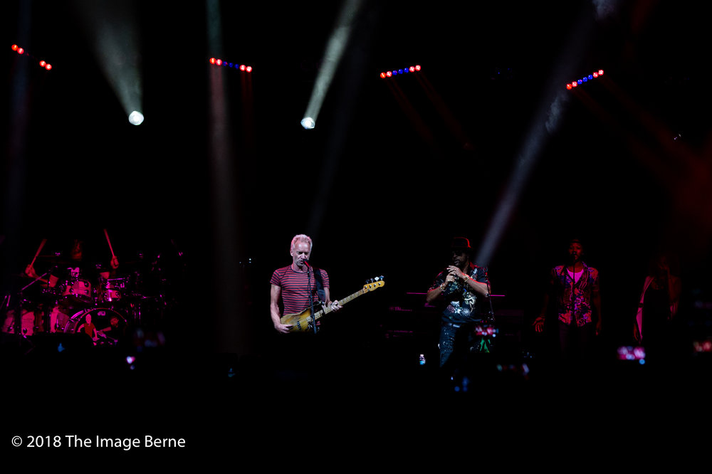 Sting, Shaggy-34.jpg