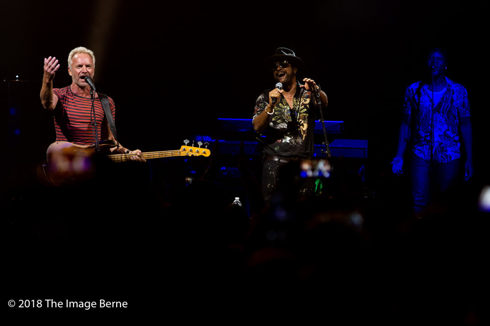 Sting, Shaggy-35.jpg
