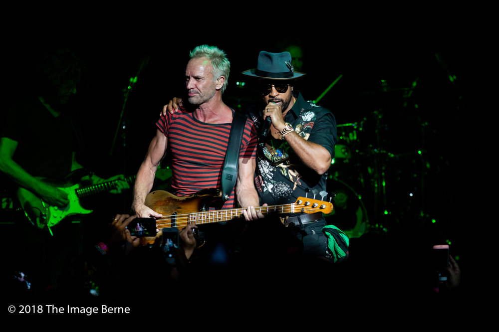 Sting, Shaggy-36.jpg