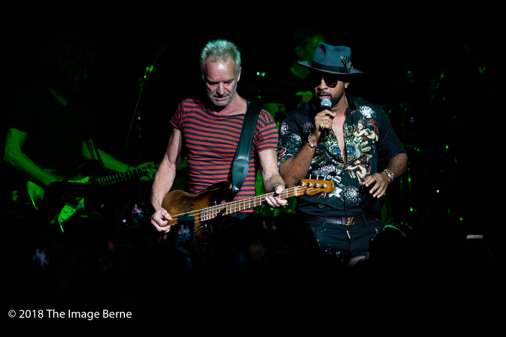 Sting, Shaggy-38.jpg
