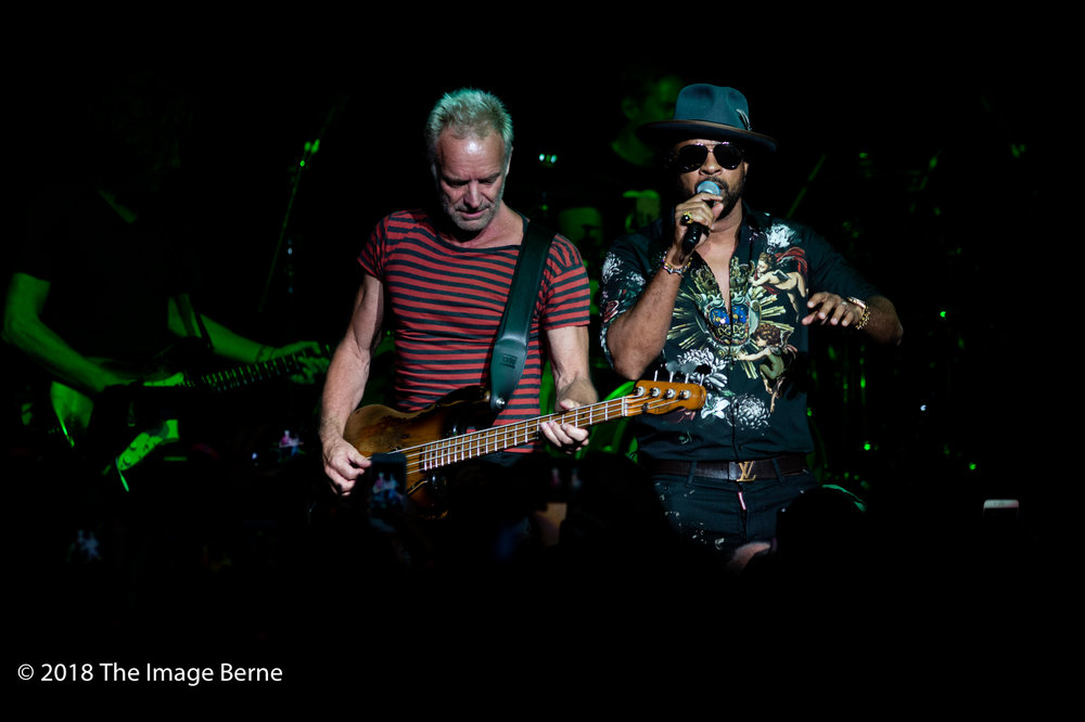 Sting, Shaggy-39.jpg