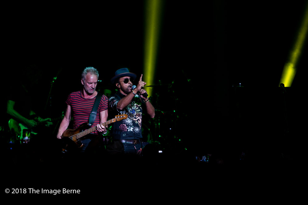 Sting, Shaggy-40.jpg