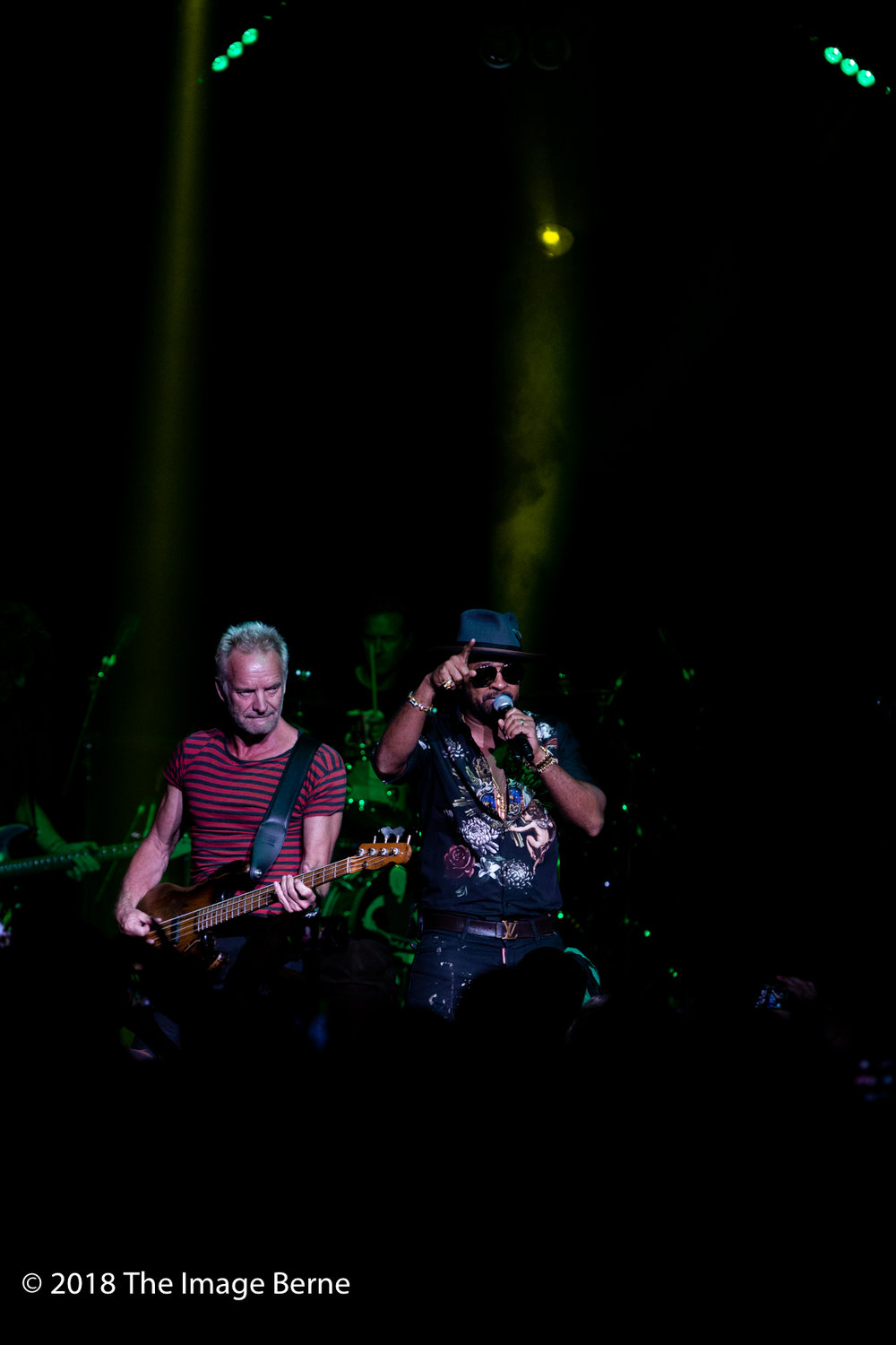 Sting, Shaggy-41.jpg