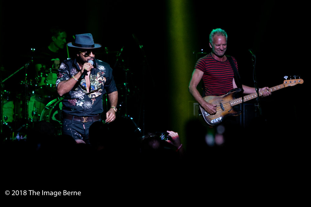 Sting, Shaggy-43.jpg