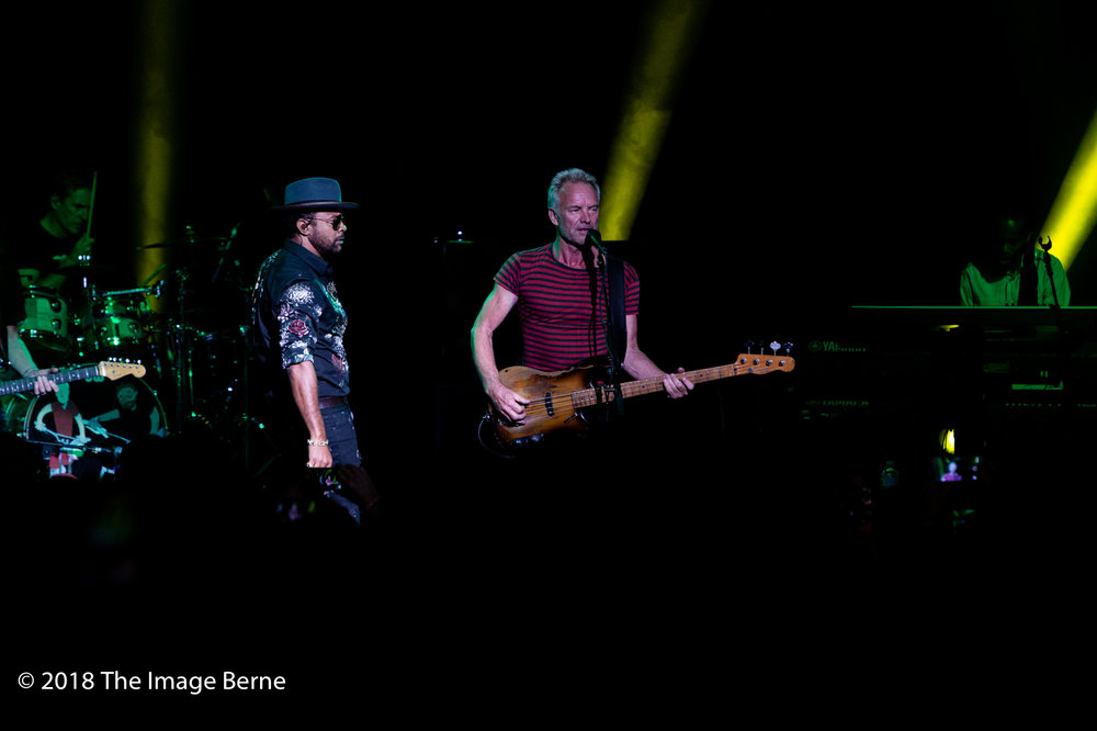 Sting, Shaggy-45.jpg