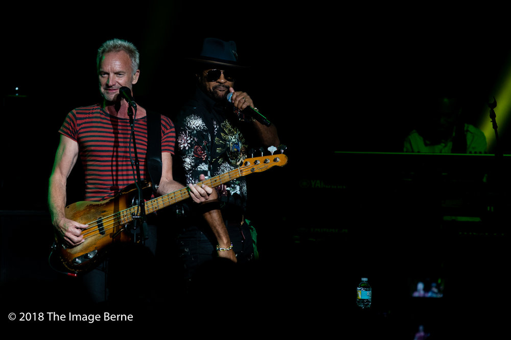 Sting, Shaggy-47.jpg