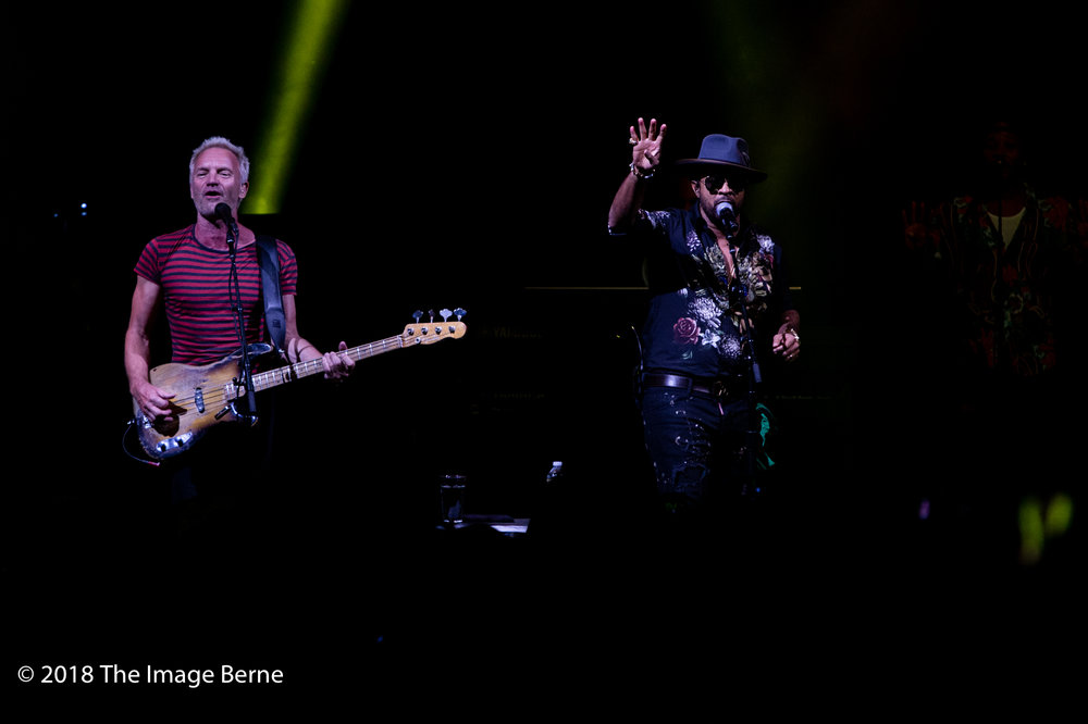 Sting, Shaggy-58.jpg