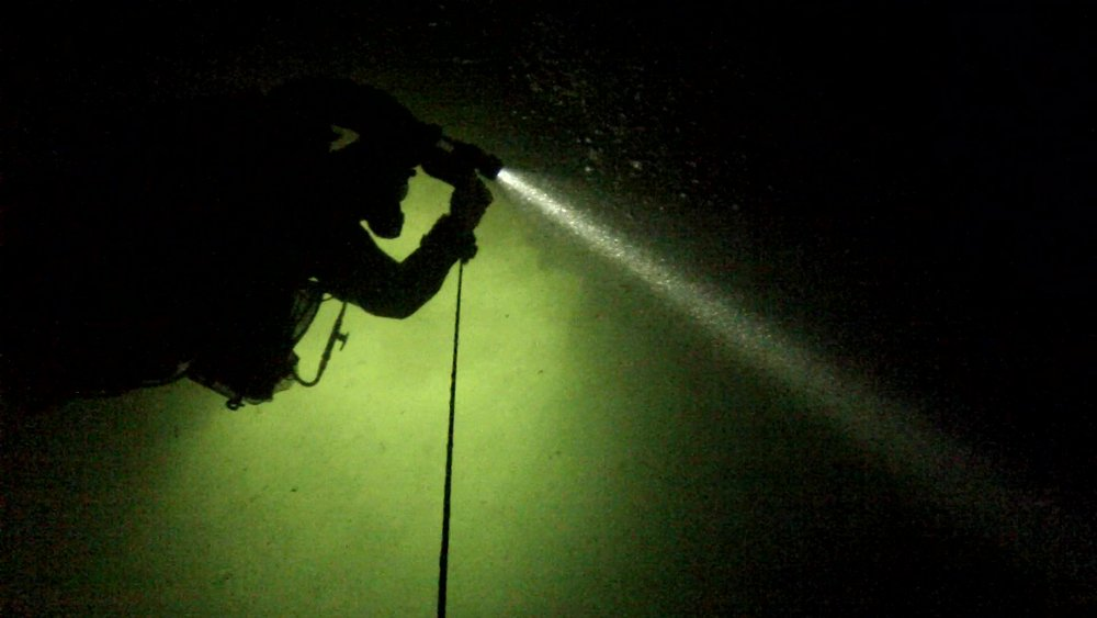 jewfish ascent_Moment.jpg