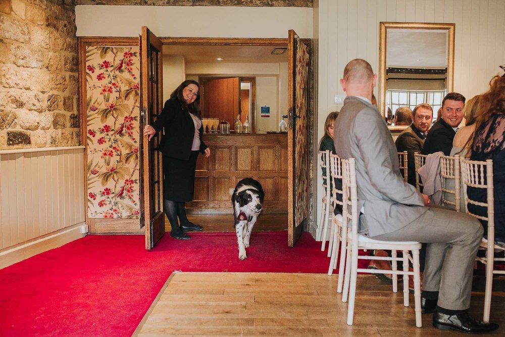 dog friendly wedding venue North Yorkshire