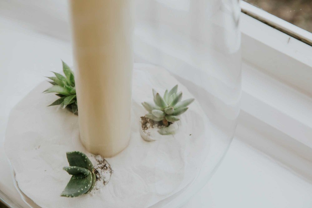 succulents wedding details