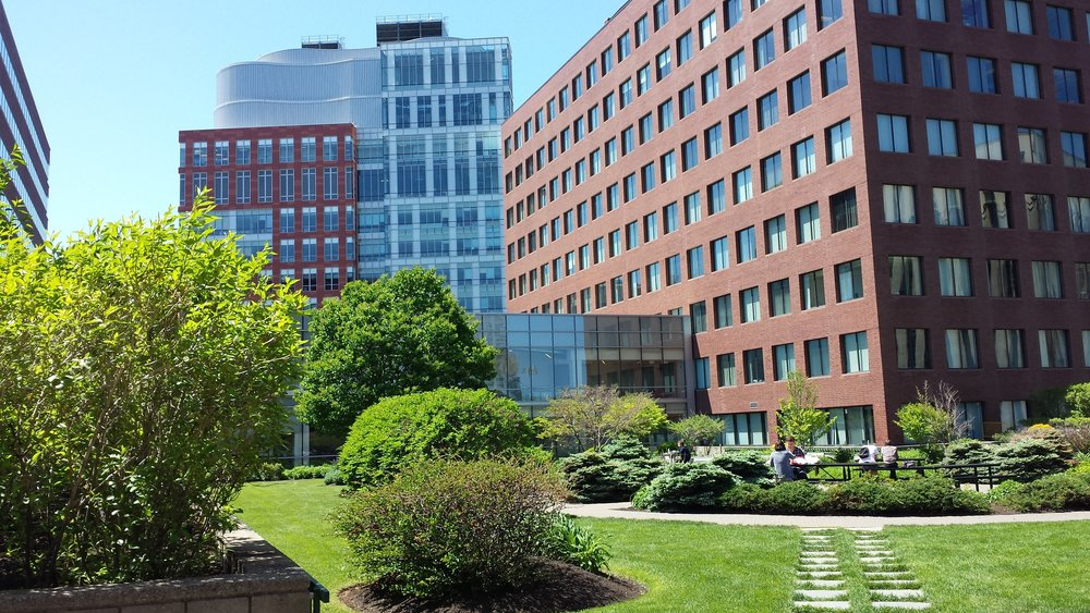 kendall square ecodistrict