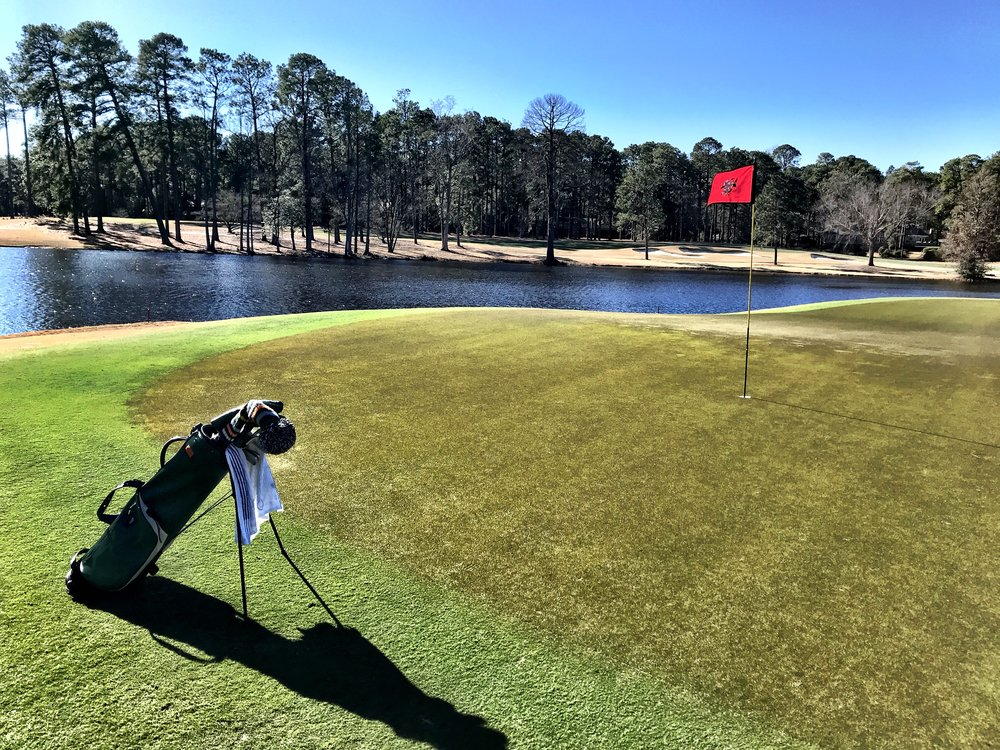 After a dreary and sodden December and first week of 2019, the sun bathing the fifteenth green at CCNC was a wonderful sight.