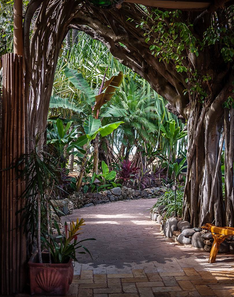 Mama's Fish House, Paia, Maui © ginkaville.com