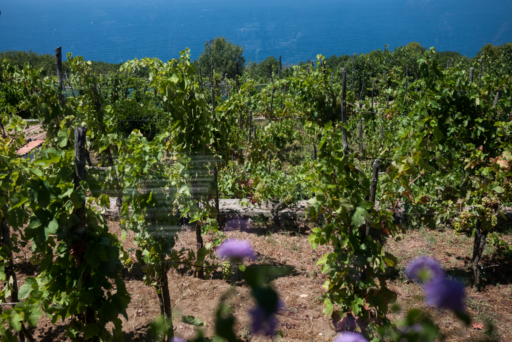 Capri-Italy-ginkaville.com-1090372