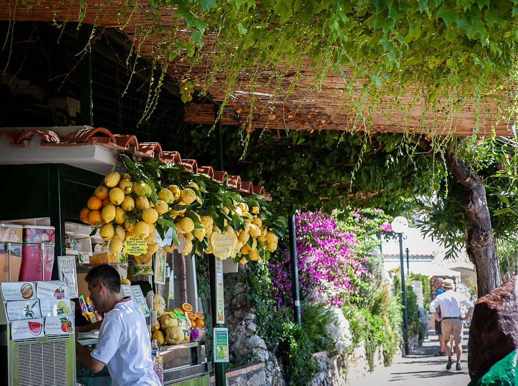 Capri-Italy-ginkaville.com--17