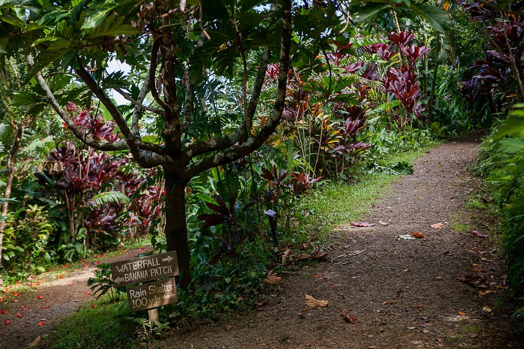 Road-To-Hana-Maui-ginkaville.com--10