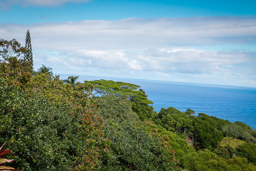 Road-To-Hana-Maui-ginkaville.com--5