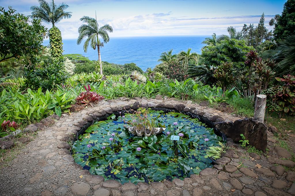 Road-To-Hana-Maui-ginkaville.com--7