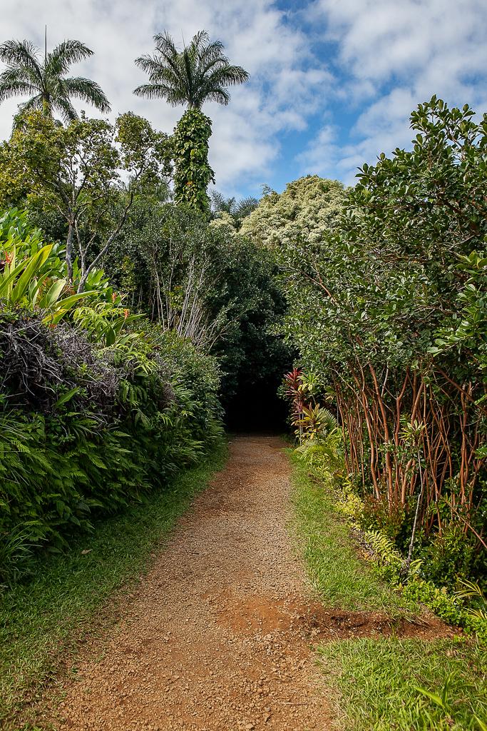 Road-To-Hana-Maui-ginkaville.com--9