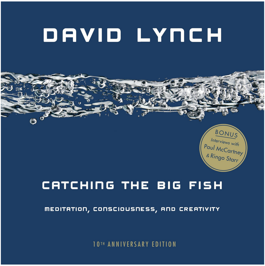 Catching The Big Fish - David Lynch Review via @ginka + ginakville.com