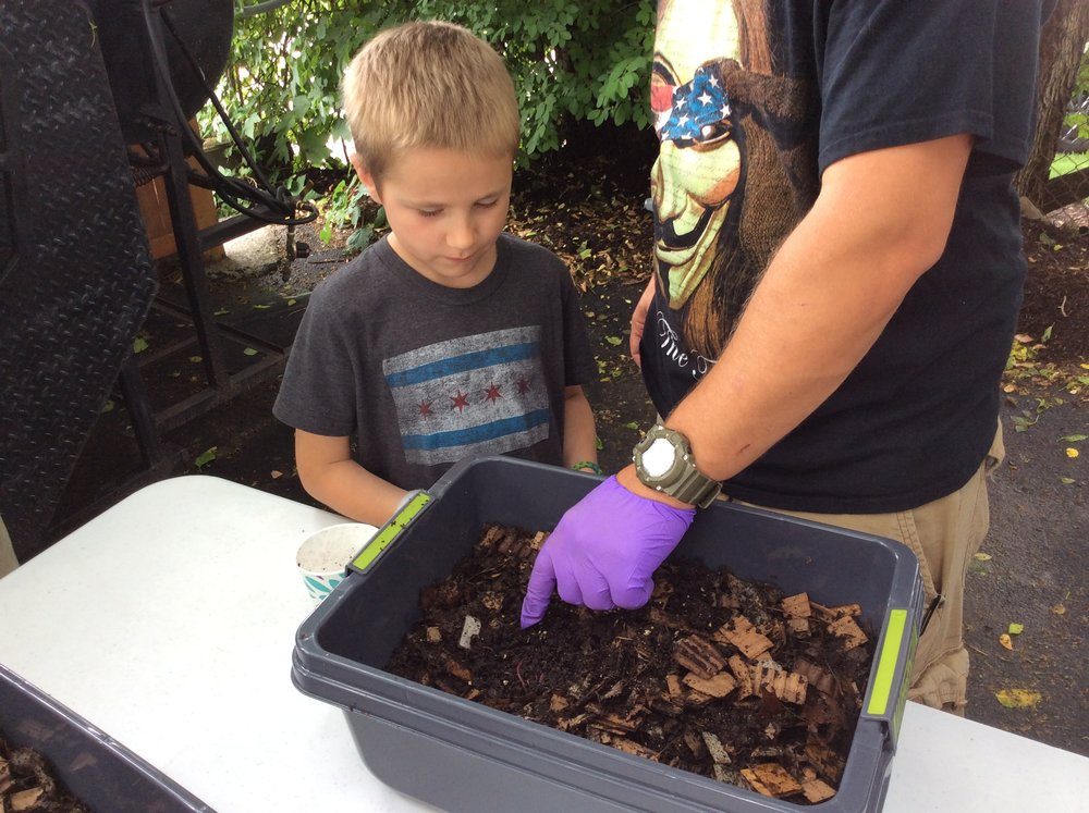 Vermicomposting is great for kids too!