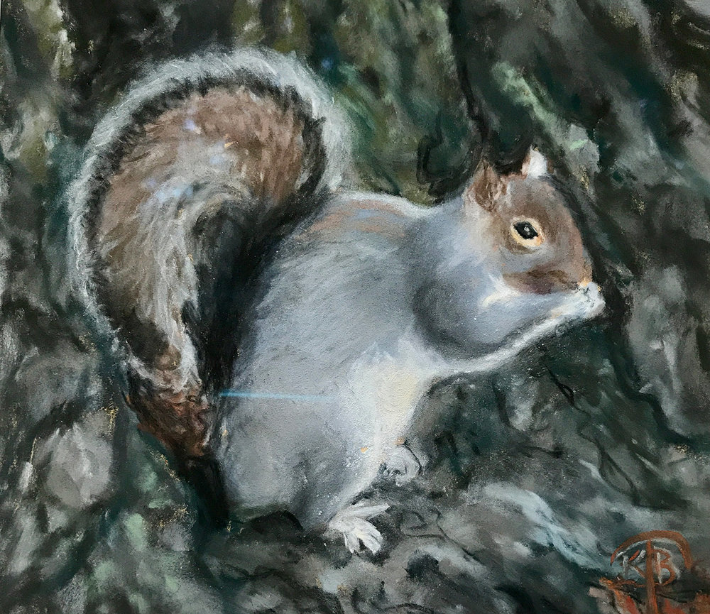 Copy of Squirrel
