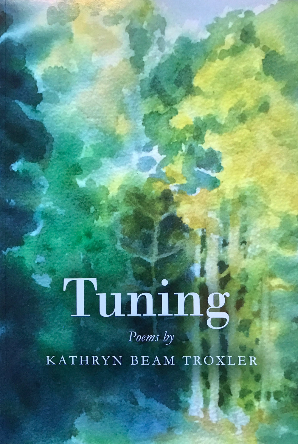 "Click here to purchase my book of poems, ""Tuning"""