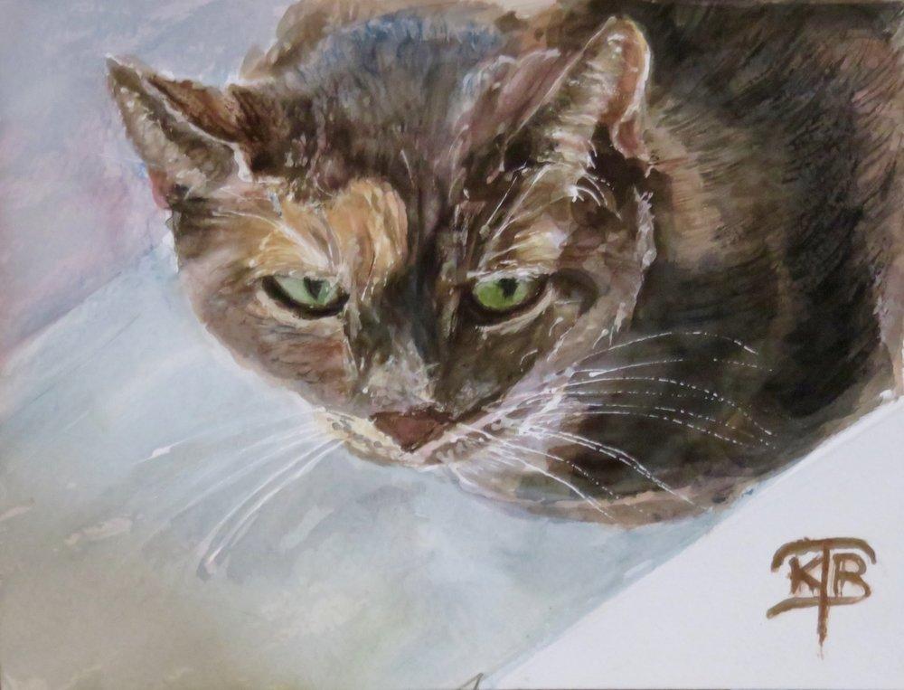 Tofu-the-cat-watercolor-painting-by- Kathryn-Beam-TroxlerIMG_0002.jpg