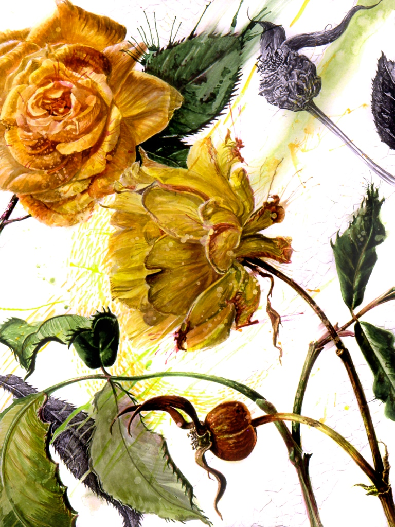 'Byzantine Roses'
