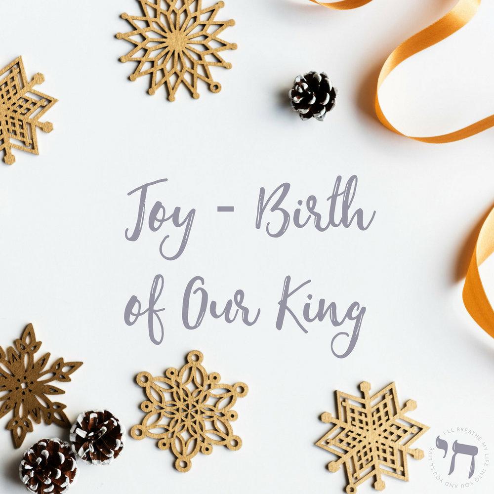 Joy - Birth of Our King.jpg
