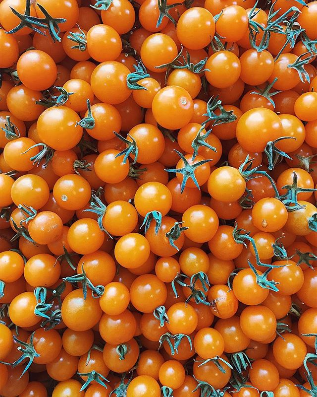 Dear sungold tomatoes. Thank you for your deliciousness. We love you. Love, Gesso. #cherrytomatoes #freshproduce #gessoresto