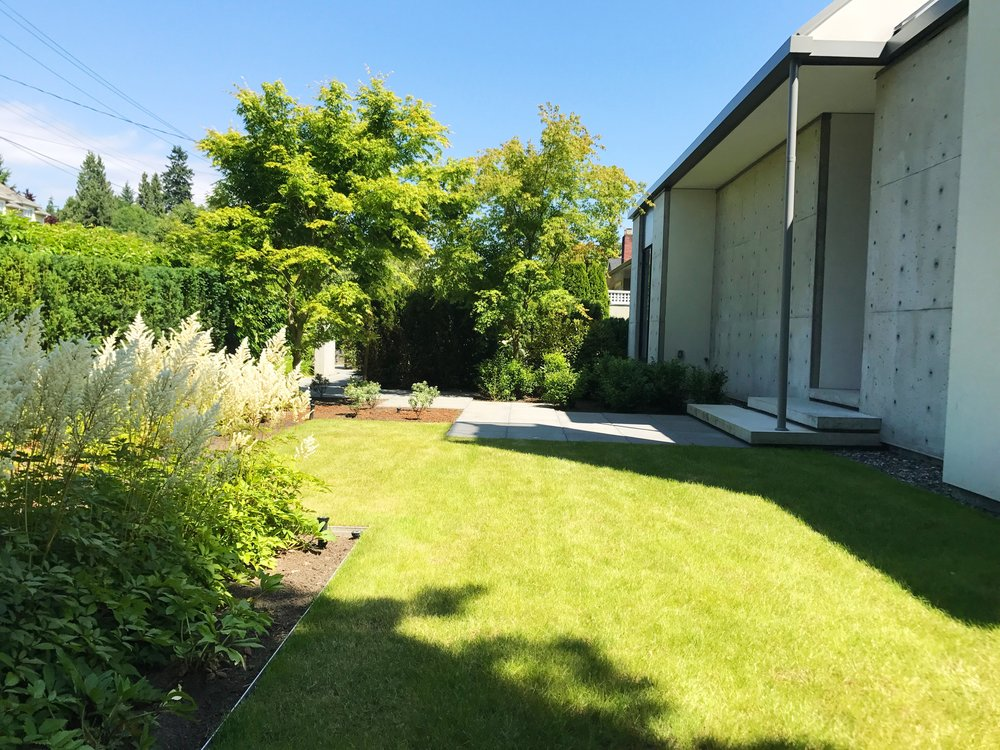 Garden and Lawn maintenance