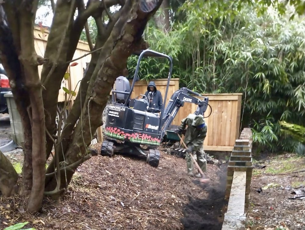garden renovation project in progress