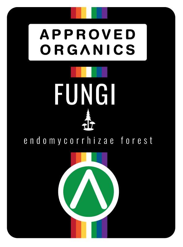 approved-organics-fungi-endomycorrhizae-forest.jpg
