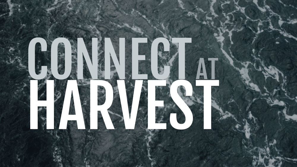 Connect_at_Harvest_16.9.jpg