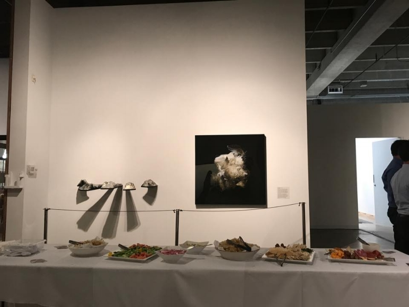 Hors D'oeuvres Spread at Red Line Gallery