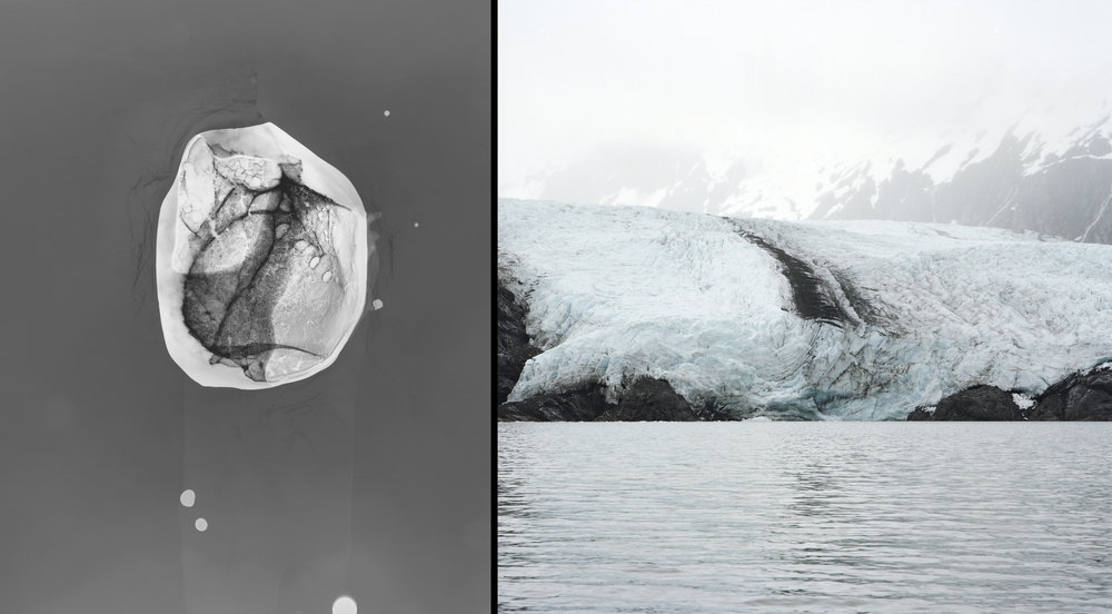 Blackstone Glacier #1:  Glacier Ice. Photogram, a cameraless photographic process, made on site in Alaska, Prince William Sound. © Shoshannah White  Portage Glacier  :  Photograph: Portage Glacier, Prince William Sound, Alaska Images © Shoshannah White