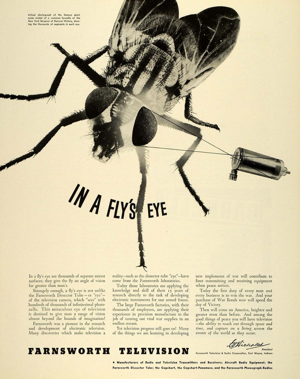 1943 Farnsworth image dissector fly.JPG