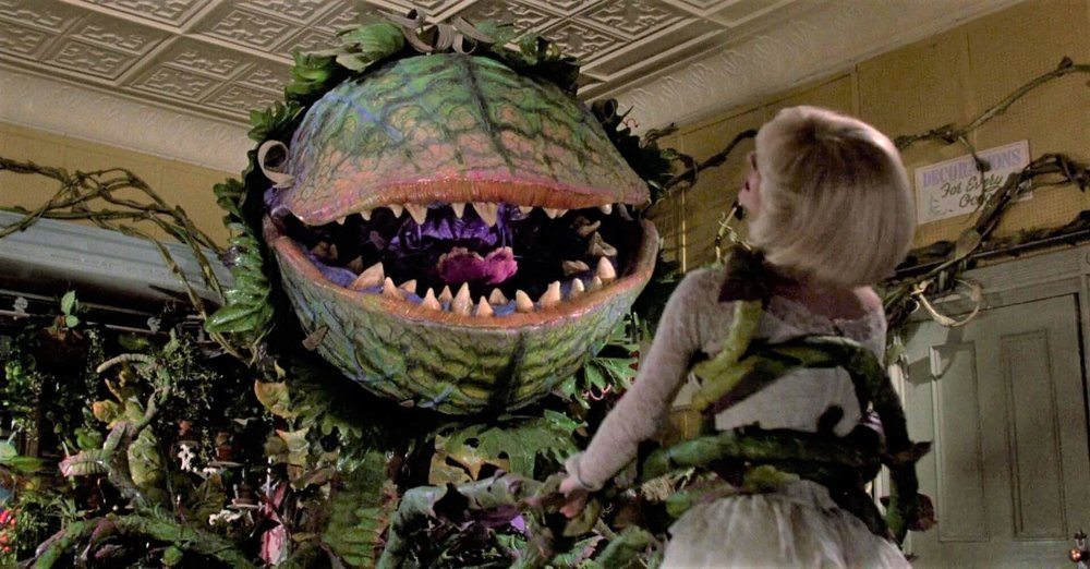 little-shop-of-horrors-audrey-ii-image-1.jpg