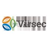 virseclogo.png