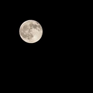 Full Moon-2.jpg