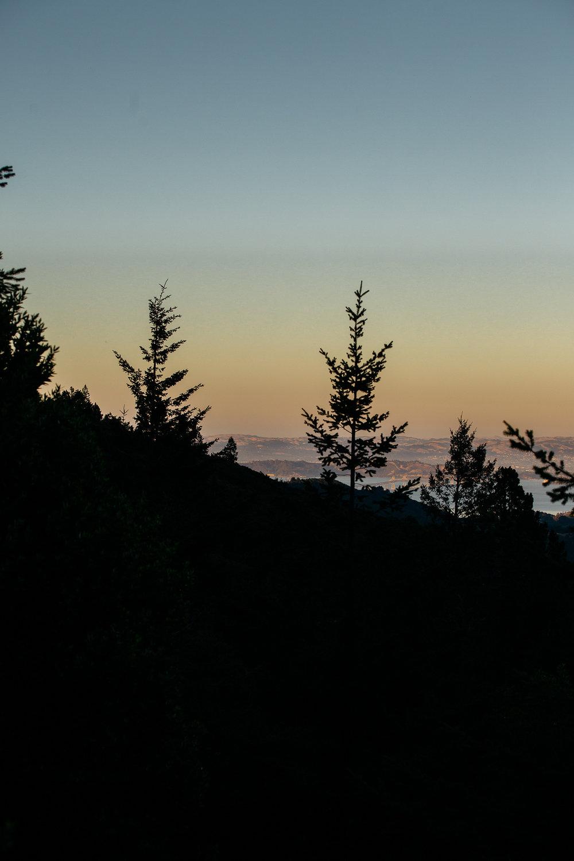 Mt T-1-2.jpg